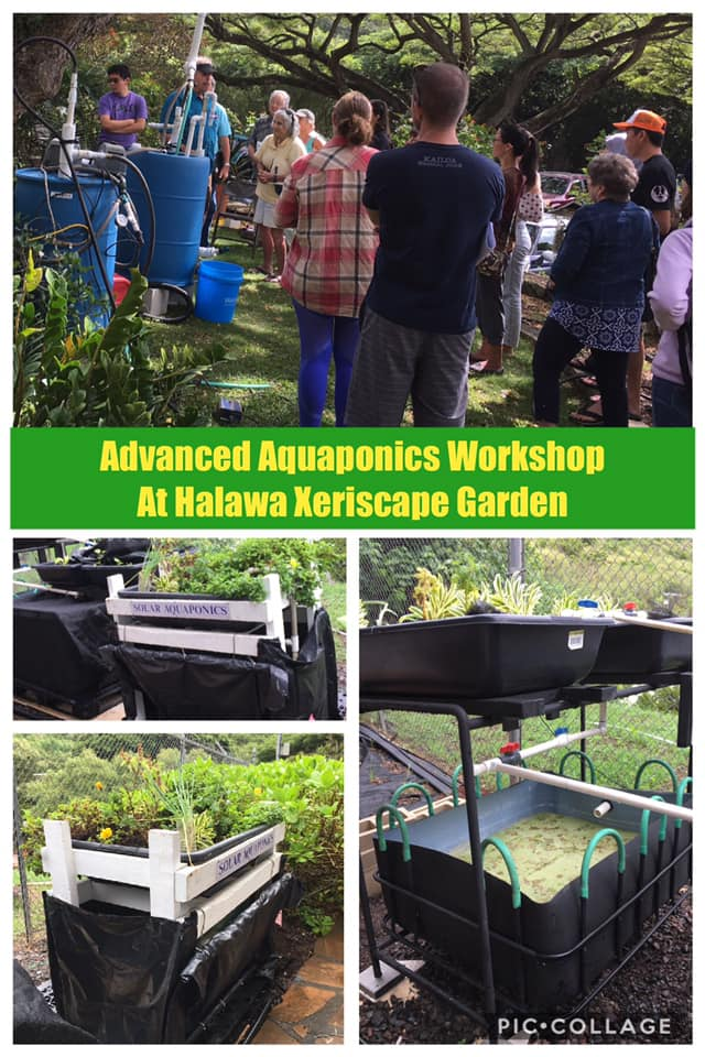 Advanced Aquaponics