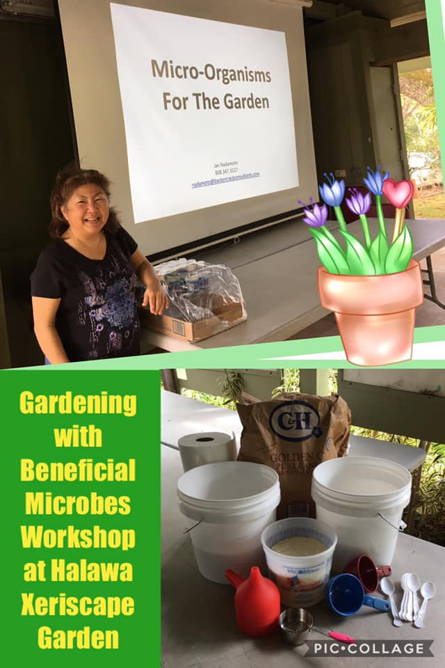 Gardening with Beneficial Microbes