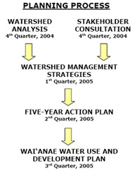 waianae planning process
